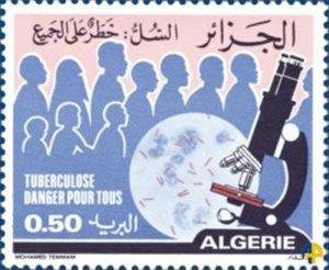 41.tuberculose