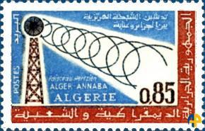 T09.alger-bone