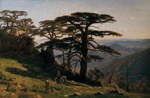 E09.Cavalier-algerien-dans-les-montagnes